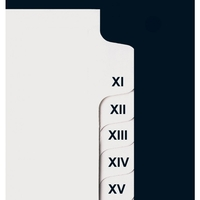 Collated Roman Numeral Side Tabs