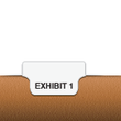 Individual Exhibit Bottom Tabs